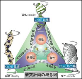 研究計画の概念図
